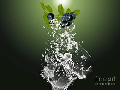 Blueberry Splash Poster by Marvin Blaine
