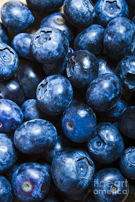 Blueberrys Background Poster by Jorgo Photography - Wall Art Gallery