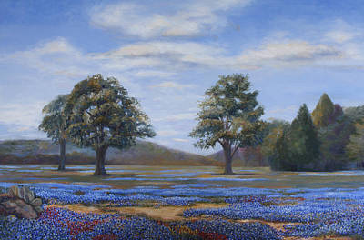 Bluebonnets In Texas Poster