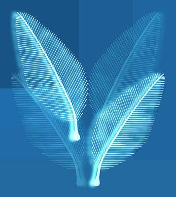 Blueprint Leaves Poster by Frank Tschakert