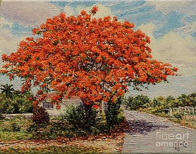 Bluff Poinciana Poster