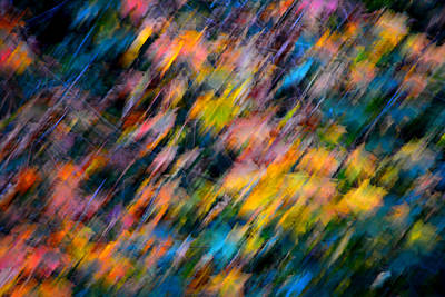 Blurred Leaf Abstract 4 Poster