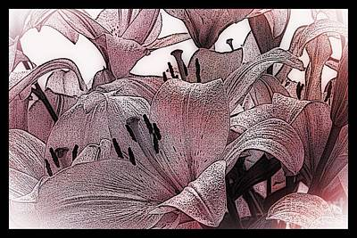 Blushing Lilies Poster by Elizabeth McTaggart