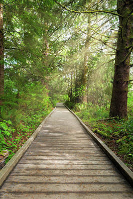 Boardwalk Along Hiking Trail At Fort Clatsop Poster