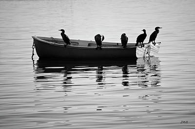 Boats And Cormorants Plymouth Harbor Bw Poster by David Gordon