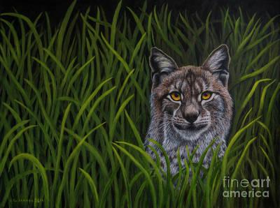 Bobcat Poster by Veikko Suikkanen