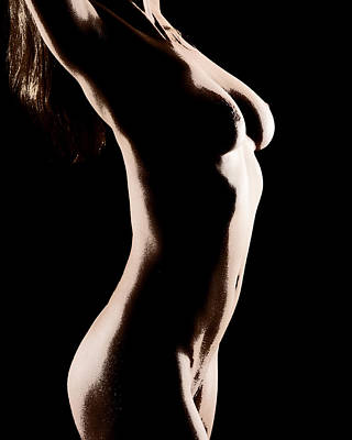 Bodyscape 542 Poster by Michael Fryd