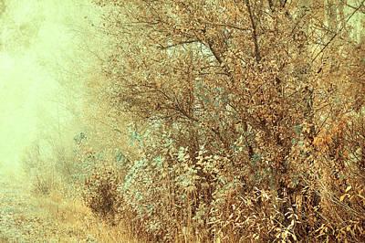 Bohemian Autumn Poster by Jenny Rainbow