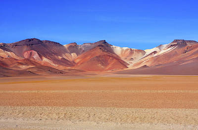 Bolivian Altiplano  Poster by Aidan Moran