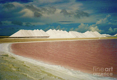 Bonaire Sea Salt Poster by Jerome Stumphauzer
