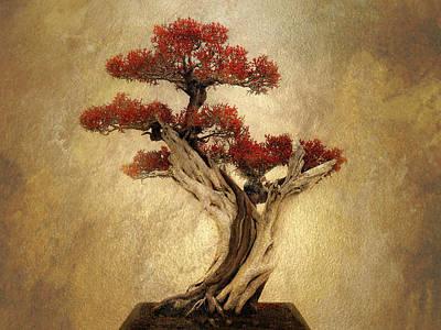 Bonsai Pine Poster by Jessica Jenney