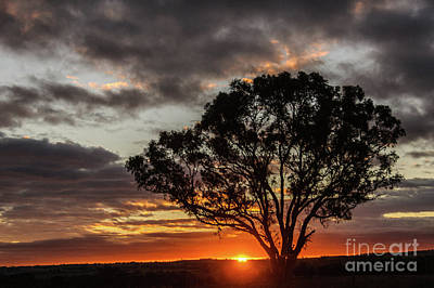 Boorowa Sunset Poster