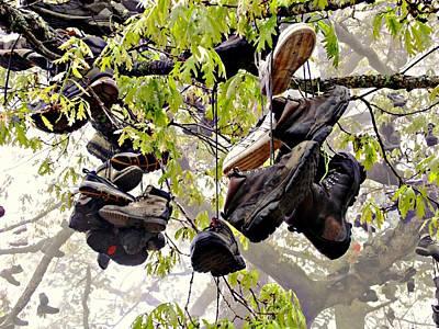 Boot Tree At Neels Gap Poster