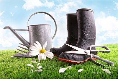 Boots With Watering Can And Daisy In Grass  Poster by Sandra Cunningham