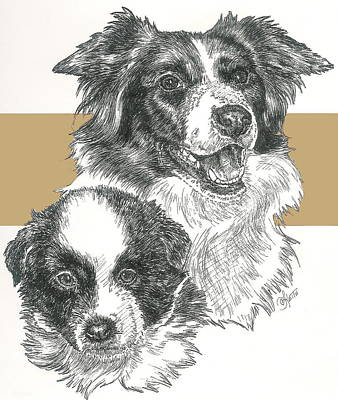 Border Collie And Pup Poster
