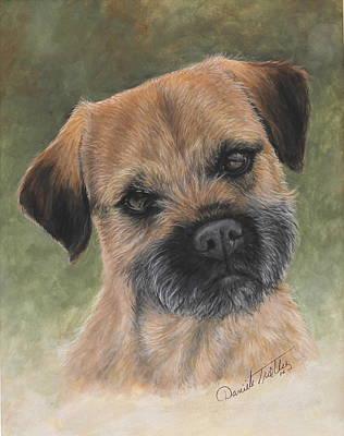 Border Terrier Portrait Poster by Daniele Trottier