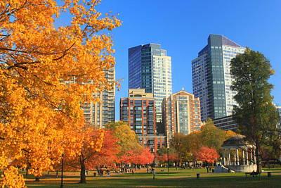 Boston Common In Autumn Poster by John Burk
