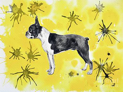 Poster featuring the painting Boston Terrier On Yellow by Zaira Dzhaubaeva
