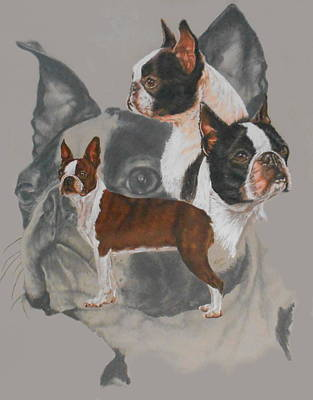 Boston Terrier W/ghost Poster by Barbara Keith