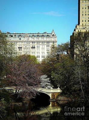 Bow Bridge In Central Park Poster by James Aiken