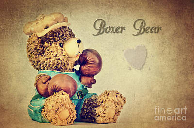 Boxer Bear Poster by Angela Doelling AD DESIGN Photo and PhotoArt