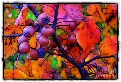 Bradford Pear In Autumn Poster
