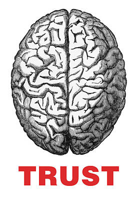 Brain Trust Poster by Craig McCausland