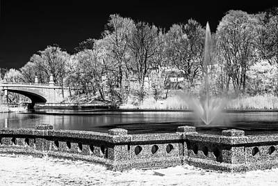 Poster featuring the photograph Branch Brook Park New Jersey Ir by Susan Candelario