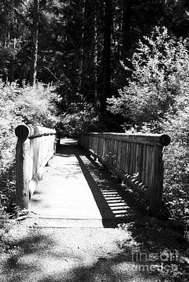 Poster featuring the photograph Bridge In Woods by Yulia Kazansky