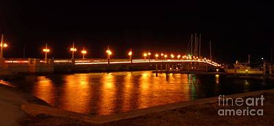 Bridge Of Lions Night Of Lights Poster by D Hackett