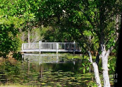 Poster featuring the photograph Bridge On Lilly Pond by Lori Mellen-Pagliaro