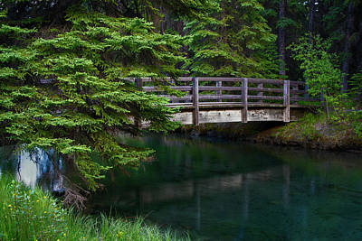 Poster featuring the photograph Bridge Over Glacial Waters In Banff National Park by Dave Dilli