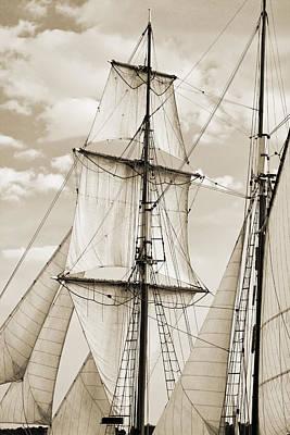 Brigantine Tallship Fritha Sails And Rigging Poster by Dustin K Ryan