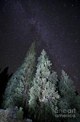 Bright Night Poster by Jeff Kolker