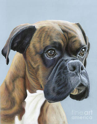 Poster featuring the painting Brindle Boxer Dog - Jack by Donna Mulley