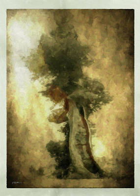 Bristlecone Pine Poster by Kathie Miller