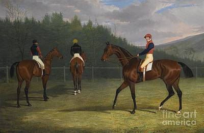 British The Start Of The Goodwood Gold Cup Poster
