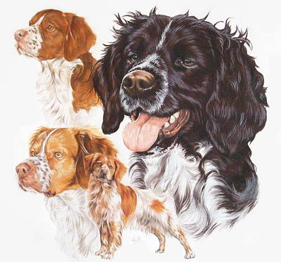 Brittany Spaniel Poster by Barbara Keith