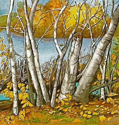 Poster featuring the painting Broken Birch  by Lynn Babineau