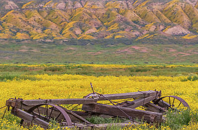 Poster featuring the photograph Broken Wagon In A Field Of Flowers by Marc Crumpler