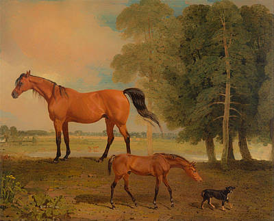 Broodmare With Foal And A Terrier Poster by Mountain Dreams