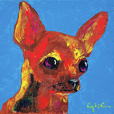 Brown Chihuahua Poster