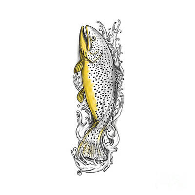 Brown Trout Swimming Up Tattoo Poster