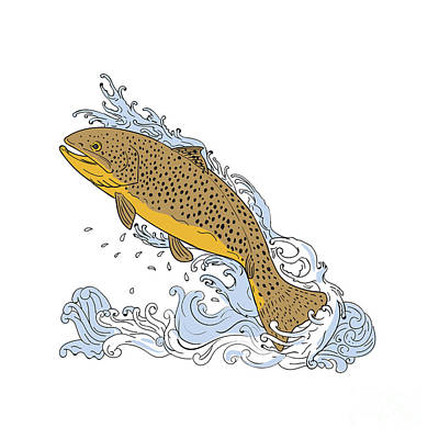 Brown Trout Swimming Up Turbulent Water Drawing Poster