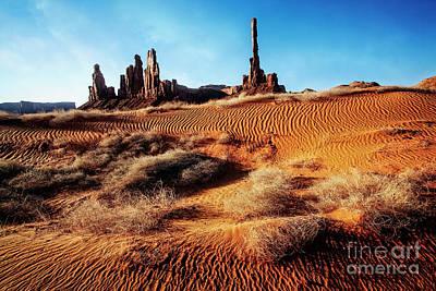 Brush On Dunes Poster