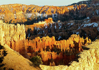 Bryce Canyon Hoodoos Evening Poster by Amelia Racca