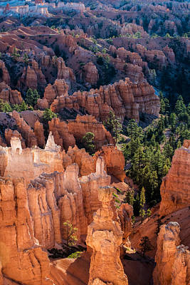 Bryce Canyon Hoodoos Poster by Joseph Smith