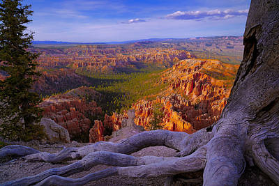 Bryce Canyon Overlook Poster