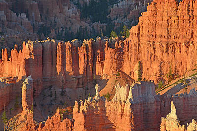 Poster featuring the photograph Bryce Canyon Sunrise 2016c by Bruce Gourley