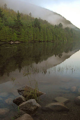 Poster featuring the photograph Bubble Pond Reflections by Stephen  Vecchiotti
